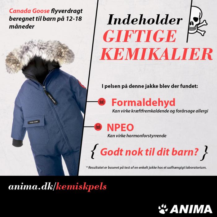 Canada Goose chilliwack parka replica price - Pels er giftigt konkluderer dansk-tysk unders?gelse | Anima.dk